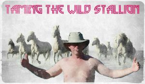taming-the-wild-stallion